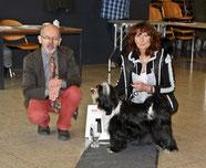 BOB Leverkusen 2013 Tibet Terrier und BIS Fabulous Teddy`s Great Jinpa
