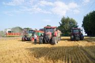 Moisson de blé 2013 (2)