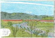 ③26/5 山梨市:笛吹川  JR中央線:山梨市駅から徒歩15分の笛吹川の土手からのスケッチです。下流方向に河口湖に下る御坂峠の山が見え、遠くに南アルプスの山も見えます。