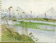 ②20/4多摩川:南多摩 高い草を通して四ツ谷橋を見る