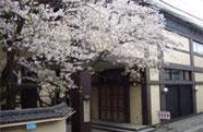 玉泉寺/照隅殿の写真