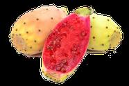billige aromen kaufen, exotisches fruchtaroma, tropische fruchtliquids, liquids selbstmischen