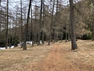 Wiesen und Wälder wechseln sich ab