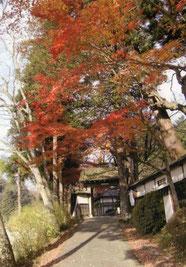 見返り橋/西念寺西門方向に向かって