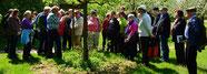 Großer Andrang bei der Eröffnung des Kulturweges, der Kräuterführung von Roland Mayer und dem Pflanzenflohmarkt