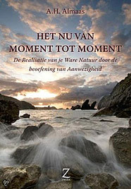 Diamond Body Book 3: Het Nu van moment tot moment