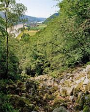 © Donau OÖ/Weissenbrunner