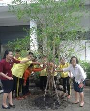 校内の空きスペースに植林をし、環境美化にも力を 入れています