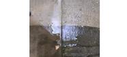 高圧洗浄 犬走 外壁 車庫 玄関 玄関ポーチ ブロック塀 汚水枡