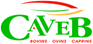 Logo et accès au site Web de la CAVEB