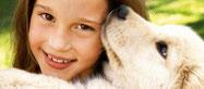 Les produits Aloe Vera de soins LR pour les chiens