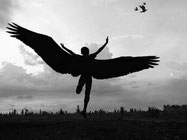 wings open to fly - the fit world traveller
