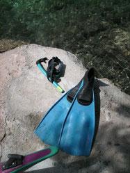 PMT (Palme, Masque, Tuba) le petit plus des mers chaudes et translucides