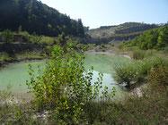 Steinbruch Musital, Natur und Vogelschutzverein Küttigen Rombach