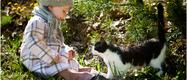 Les produits Aloe Vera de soins LR pour les chats