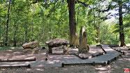La clairière du Chêne des Missions dans la forêt de Meudon.