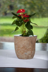 Naturstein Vase