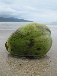 Het eiland Koh Chang gaf ons na vele reisweekjes een welverdiende rust.....