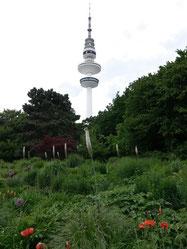 Park, Planten und Blomen, met op de achtergrond de Heinrich-Hertz-Turm
