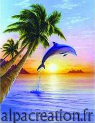 BRODERIE DIAMANT dauphin