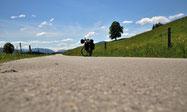 Straße im Allgäu auf der Radreise vom Bodensee zum Königssee