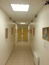 La galerie photos de la Maison du Miel et des Abeilles du Val Dunois