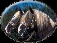 von Alois Achatz Pferdeartikel handgefertigte Pferdeartikel aus Edelstahl wie z.B. Pferdegebiss Postkandare
