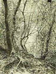 """""""Kleiner See"""", Tusche, 40 x 30 cm, 2012, verkauft"""
