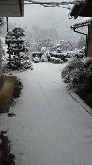 昨夜はなかった雪 今朝はこんなでした サウナから裸で飛び出すのにうってつけ (これは立体写真とは違いまっせ)