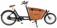 Babboe Mini Mountain Cargo e-Bike 2020