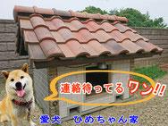 加須市屋根工芸 愛犬ひめ 瓦屋根の犬小屋加須市 屋根工事 ©2018屋根工芸 ㈱大塚興業社