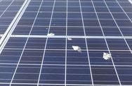 太陽光パネル掃除