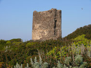 Torre de Foghe