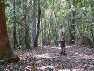 Schwitzen im Urwald - Cotigao Wildlife