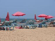 am Candolim-Beach