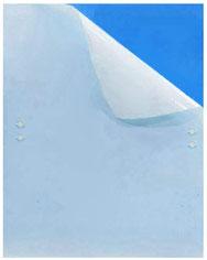 Thripse bekämpfen - Bei Blaukarten handelt es sich um blaue, mit nicht trocknenden Klebstoffen angestrichene Tafeln, idealerweise aus Kunststoff. Sie sind perfekt, um einen Befall von Schädlingen frühzeitig zu erkennen und den Befall einzudämmen.