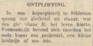 29-6-1946 Nieuwsblad van het Zuiden