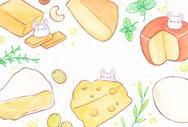 さくま    /   チーズに夢中