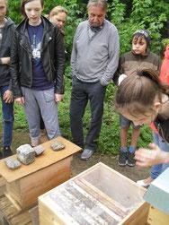 Julia, rechts im Bild, arbeitet seit drei Jahren in der Imkerei mit und kann den Besuchern alles genau erklären.