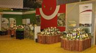 Wir zeigen die Vielfalt der Obstsorten in NRW und u.a. die dazugehörigen Lebensräume