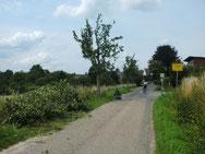 Baumschnitt an der Birnenallee