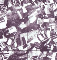 Birenallee auf einem Luftbild von 1934