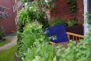 Balkonkästen mit einer Mischung aus Kräutern und Sommerblumen bepflanzt