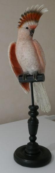 statue perroquet rose : univers emylila