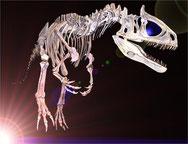 dinosaurusnet