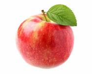 groei van de appel : videoquiz