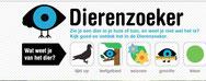dierenzoeker : infosite