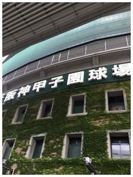 酒菜屋 かんきち 天満 居酒屋 甲子園 阪神タイガース