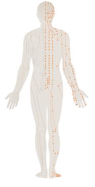 Acupunctuur Almere - Blossom Gan