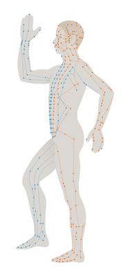 Acupunctuur behandeling Almere - Blossom Gan